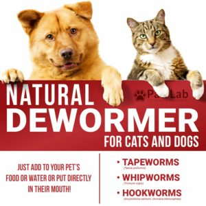 PawLab Natural Dewormer for Dogs & Cats - The Best Natural
